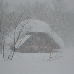 И это только середина января! А что же будет с крышей дальше?