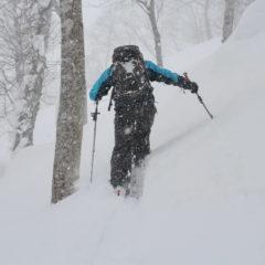 Гид пробивает лыжню в пухляке